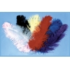 Jumbo Ostrich Plumes Red